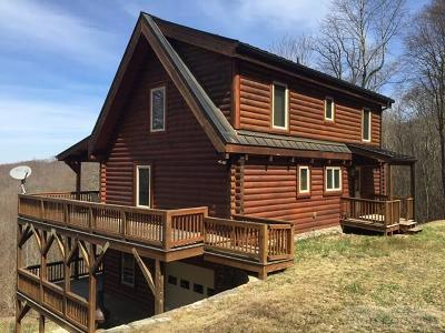 Watauga County Single Family Home For Sale: 979 Spice Creek Road