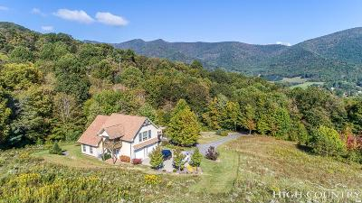 Ashe County Single Family Home For Sale: 683 Perry Road