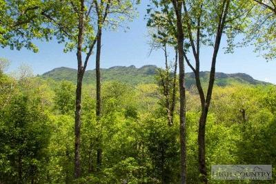Avery County Residential Lots & Land For Sale: 1729 Forest Ridge Drive #17