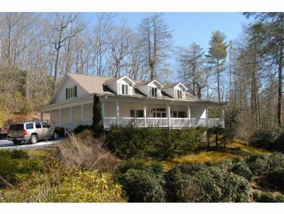Highlands Commercial For Sale: 2437 Cashiers Road