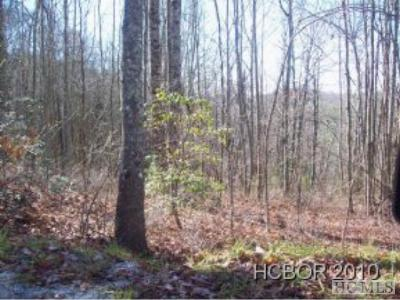Scaly Mountain Residential Lots & Land For Sale: Highland Gap Road