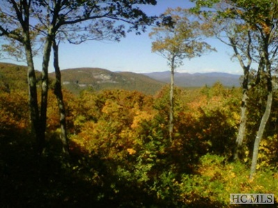 Lake Toxaway Residential Lots & Land For Sale: Tm Iv 29 Summit Ridge Rd