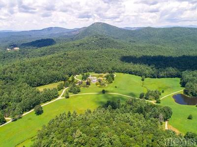 Cashiers, Glenville, Sapphire, Highlands, Scaly Mountain Single Family Home For Sale: 1534* Silver Run Road