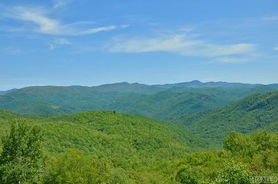 Cashiers, Glenville, Sapphire, Highlands, Scaly Mountain Single Family Home For Sale: 6370 Big Ridge Road