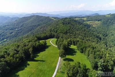 Cashiers, Glenville, Sapphire, Highlands, Scaly Mountain Residential Lots & Land For Sale: Bee Tree Road