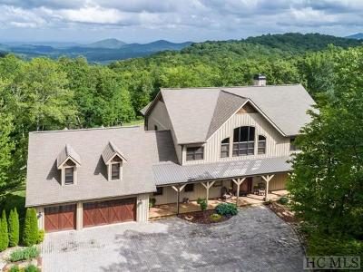Cashiers, Glenville, Sapphire, Highlands, Scaly Mountain Single Family Home For Sale: 380 Panthertown Trail