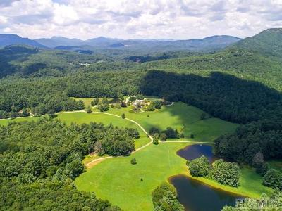 Cashiers, Glenville, Sapphire, Highlands, Scaly Mountain Residential Lots & Land For Sale: 1534* Silver Run Road