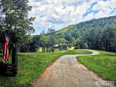 Cashiers, Glenville, Sapphire, Highlands, Scaly Mountain Single Family Home For Sale: 924 Silver Run Road