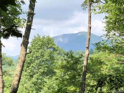 Wade Hampton Residential Lots & Land For Sale: E-5 Chimney Top Tr.
