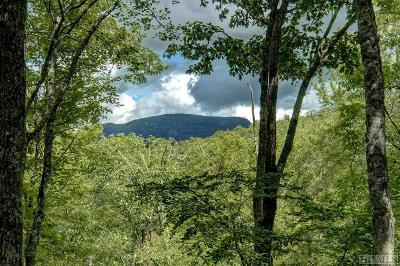 Highlands Falls Cc Single Family Home For Sale: 168 Sassafras Court