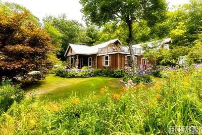Scaly Mountain Single Family Home For Sale: 480 Winfield Farm Road