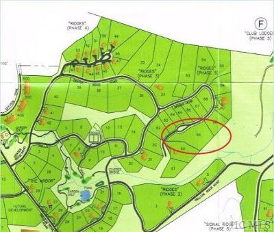 Wildcat Cliffs Cc, Trillium High, Trillium Links, Trillium Place, Highlands Cc, Highlands Falls Cc, Wade Hampton, Cullasaja Club, Mountaintop Golf Residential Lots & Land For Sale: Lot 59 Springhead Trail