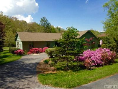Highlands Single Family Home For Sale: 1080 Skylake Drive