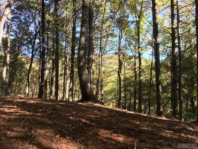 Glenville Residential Lots & Land For Sale: Lot 39c Ell Ridge