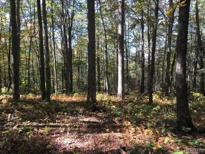 Glenville Residential Lots & Land For Sale: Lot 68d Rye Mountain Drive