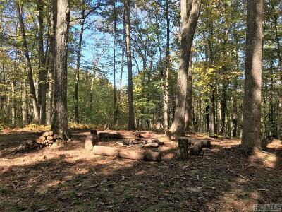 Glenville Residential Lots & Land For Sale: Lot 69d Rye Mountain Drive