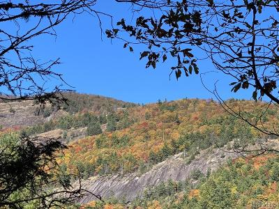 Glenville Residential Lots & Land For Sale: Pt Tr C Ruffed Grouse Road