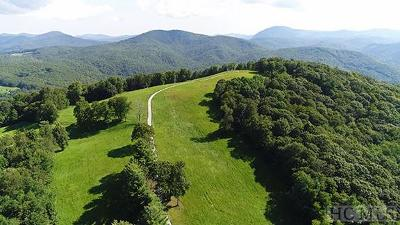 Glenville Residential Lots & Land For Sale: Tbd Bee Tree Road
