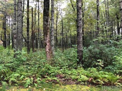 Residential Lots & Land For Sale: 32b Lone Chimney Drive