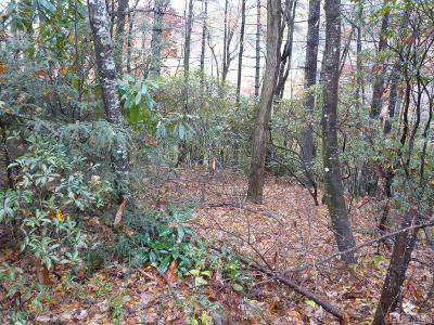 Lake Toxaway Residential Lots & Land For Sale: Lot 30 Lucy Lane