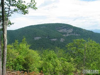 Lake Toxaway Residential Lots & Land For Sale: Mr 38 Panthertown Road