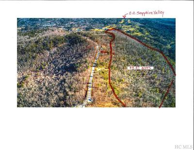Cashiers Residential Lots & Land For Sale: East Ridge Road