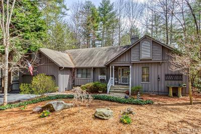 Sapphire Single Family Home For Sale: 64 N Horseshoe Drive