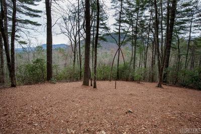 Sapphire Residential Lots & Land For Sale: Lot 77 Long Lake Trail
