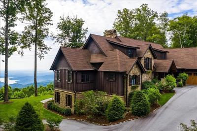 Sapphire Single Family Home For Sale: 917 Whitewater Ridge Road