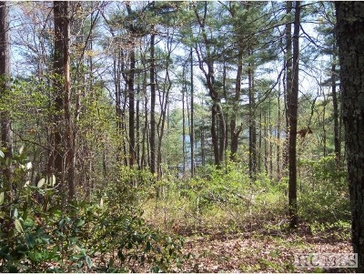Lake Toxaway Residential Lots & Land For Sale: Lot 2 Panther Ridge Road
