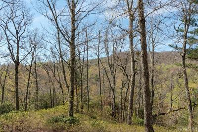 Glenville Residential Lots & Land For Sale: Lot 1 Ridgemont Road