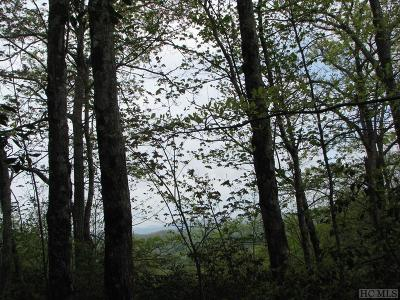 Lake Toxaway Residential Lots & Land For Sale: 4 Toxaway Mountain Drive