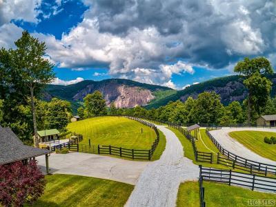 Glenville Single Family Home For Sale: 160 Down Ridge Road