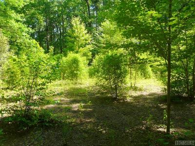 Lake Toxaway Residential Lots & Land For Sale: Lot 1 Toxaway Drive