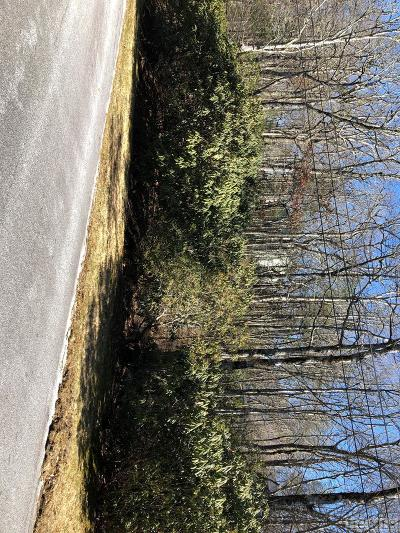 Highlands Residential Lots & Land For Sale: Lot 34 Wildwood Drive