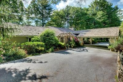 Sapphire Single Family Home For Sale: 328 Trays Island Road