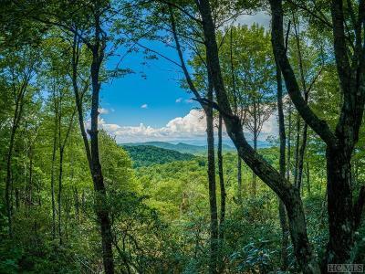 Glenville Residential Lots & Land For Sale: B-4 Laurel Knob Road