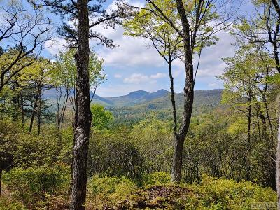 Lake Toxaway Residential Lots & Land For Sale: Hawk Mountain Road