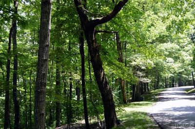 Lake Toxaway Residential Lots & Land For Sale: 23 Rocky Mountain Road