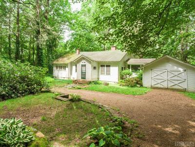 Single Family Home For Sale: 781 Foreman Road
