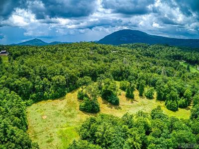 Cashiers Residential Lots & Land For Sale: Lot 37 Mountain Meadow Lane