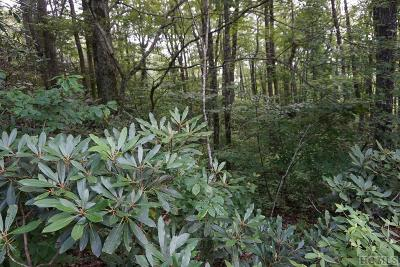 Highlands Residential Lots & Land For Sale: Tbd Whiteside Mountain Road