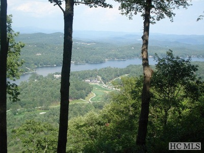 Lake Toxaway Residential Lots & Land For Sale: Lot 20 Toxaway Cliff