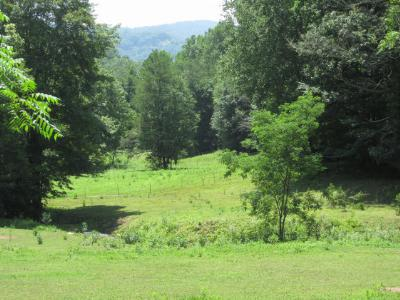 Topton Residential Lots & Land For Sale: Lot 13 Preserve Valley