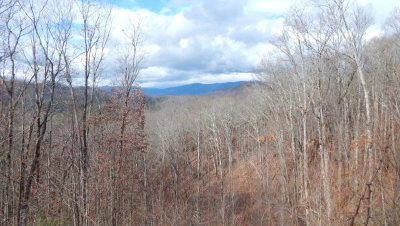 Hayesville Residential Lots & Land For Sale: 64m Pinnacle Drive