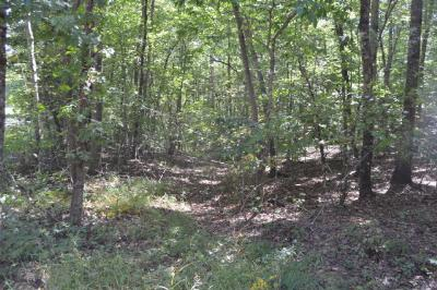 Murphy Residential Lots & Land For Sale: Lot 18a Hawthorne Lane