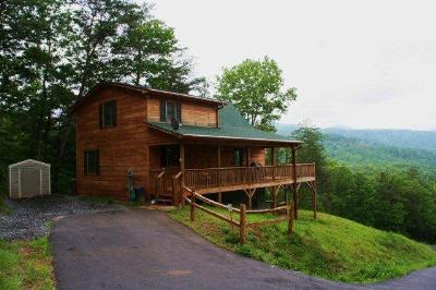 Murphy Single Family Home For Sale: 236 View Ridge Trail