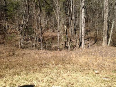 Brasstown Residential Lots & Land For Sale