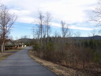 Murphy NC Residential Lots & Land For Sale: $24,500