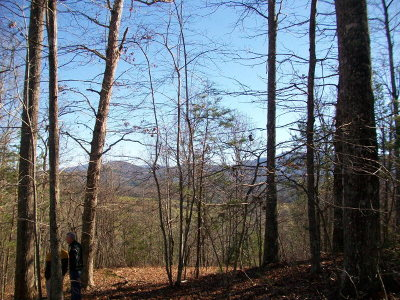 Brasstown Residential Lots & Land For Sale: Old House Drive